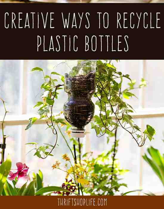 recycle-plastic-bottles